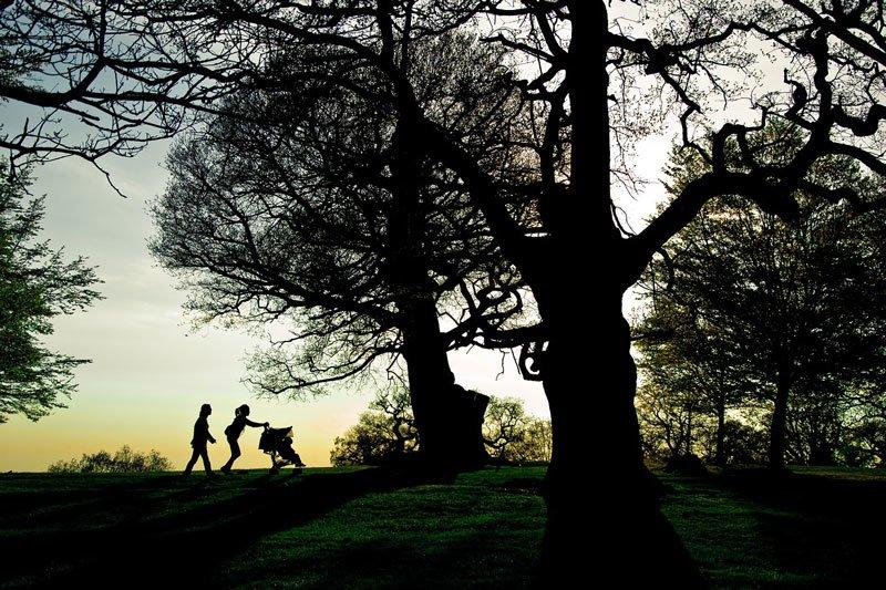 ричмънд-парк-лондон