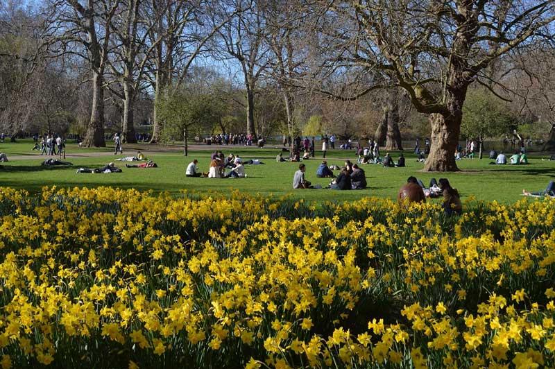сейнт-джеймс-парк-лондон