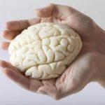 5 лесни упражнения за стимулиране на ума